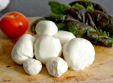 Animal vegetable miracle mozzarella recipe