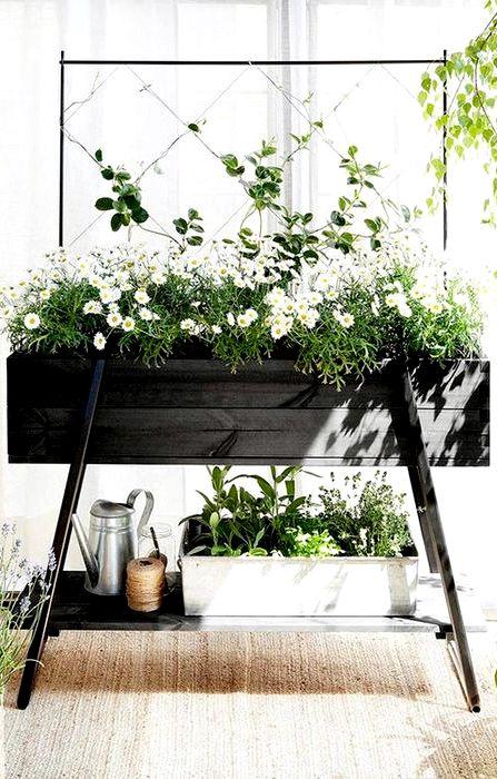 fleurs de printemps en jardiniere recipe. Black Bedroom Furniture Sets. Home Design Ideas