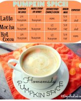 Mocha powder starbucks recipe for pumpkin